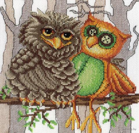 """Вышивка крестом """"Друг совы"""" (210x190 мм) — фото, картинка"""