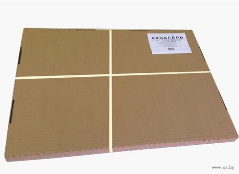 Бумага акварельная (А1; 100 листов)