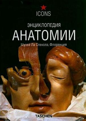 Энциклопедия анатомии. М. Дюринг