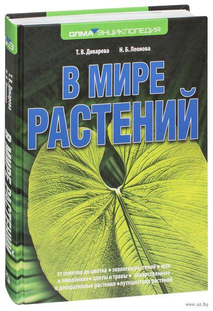 В мире растений — фото, картинка