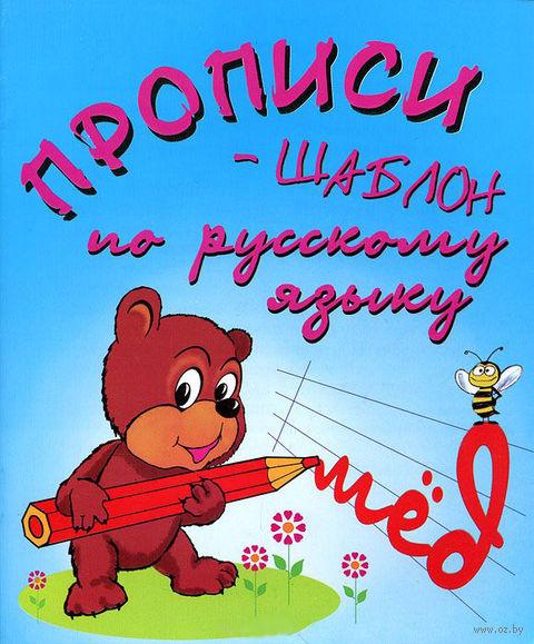 Прописи-шаблон по русскому языку — фото, картинка
