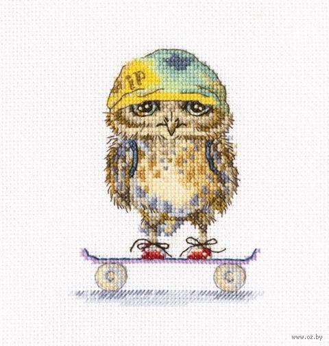 """Вышивка крестом """"Скейтбордист"""""""