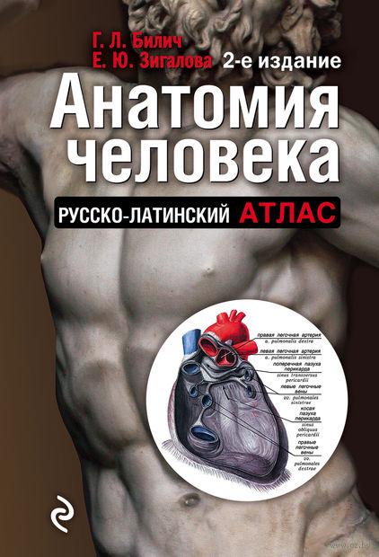 Анатомия человека. Русско-латинский атлас. Габриэль Билич, Елена Зигалова