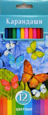 """Цветные карандаши """"Аквамариновое настроение"""" в картонной коробке (12 цветов)"""