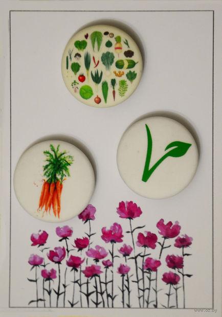 """Набор значков маленьких """"Вегетарианство"""" (арт. 536) — фото, картинка"""