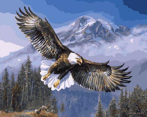 "Картина по номерам ""Дух свободы"" (400х500 мм) — фото, картинка"