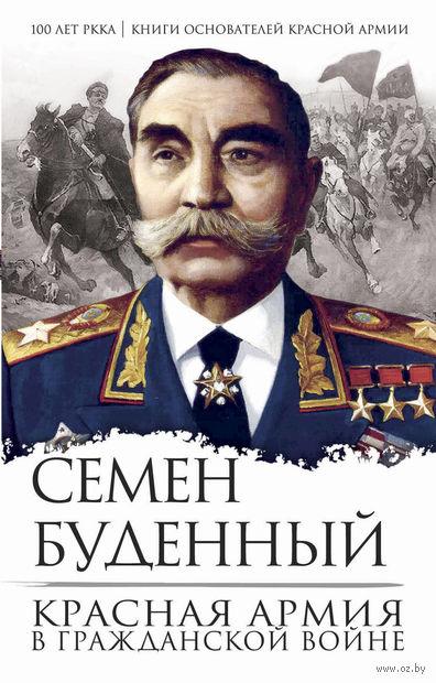 Красная армия в Гражданской войне — фото, картинка