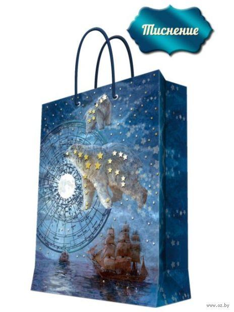"""Пакет бумажный подарочный """"Большая медведица"""" (17,8х22,9х9,8 см; арт. 43512) — фото, картинка"""