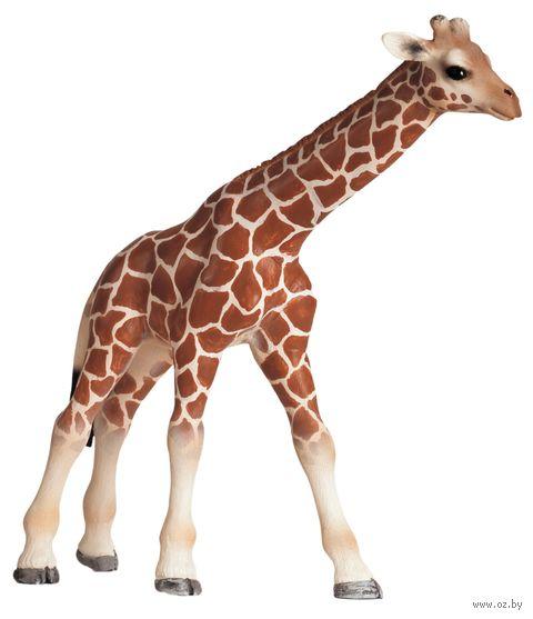 "Фигурка ""Детеныш жирафа"" (10 см) — фото, картинка"