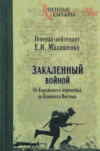 Закаленный войной. От Карельского перешейка до Ближнего Востока. Евгений Малашенко
