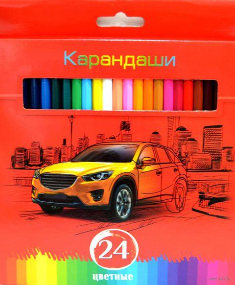 """Набор карандашей цветных """"Красная энергия"""" (24 цвета)"""