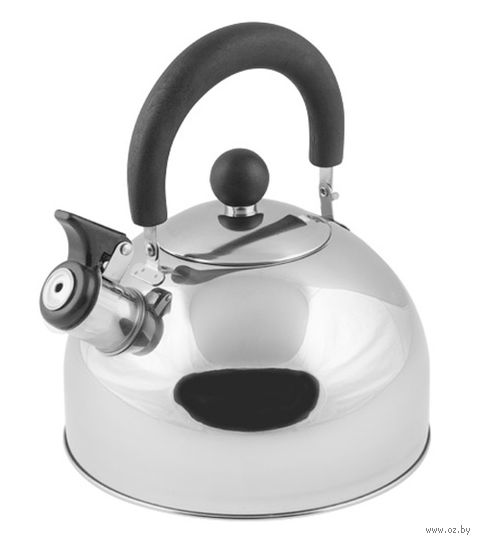 Чайник металлический со свистком (2,15 л; серебристый металлик) — фото, картинка