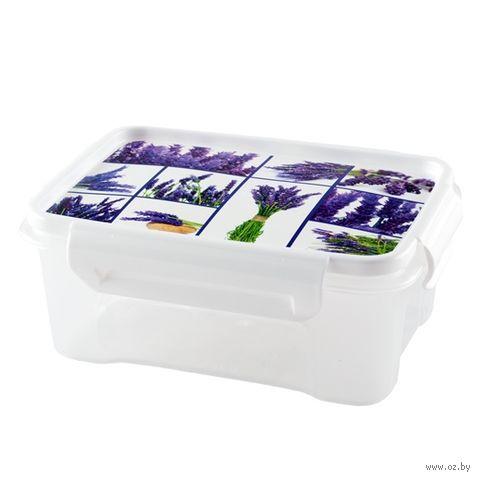 "Контейнер для хранения продуктов ""Лаванда"" (0,75 л) — фото, картинка"