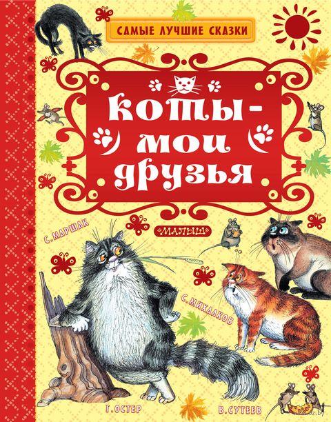 Коты - мои друзья — фото, картинка