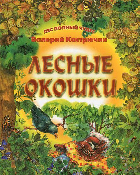 Лесные окошки. Валерий Кастрючин