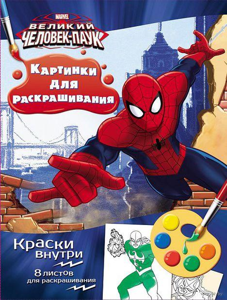Человек-паук. Раскраска с красками — фото, картинка