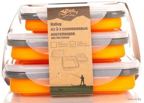 Набор контейнеров для продуктов (3 шт.) — фото, картинка