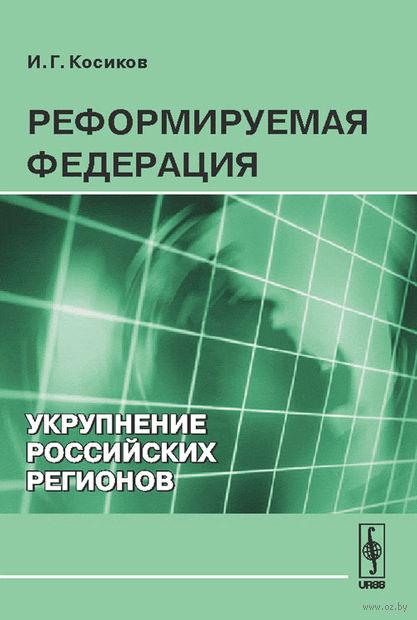 Реформируемая Федерация. Укрупнение российских регионов — фото, картинка