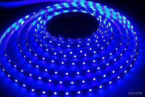 Лента светодиодная LED SMD 2835/60 IP20-4.8W/Blue (5 м)