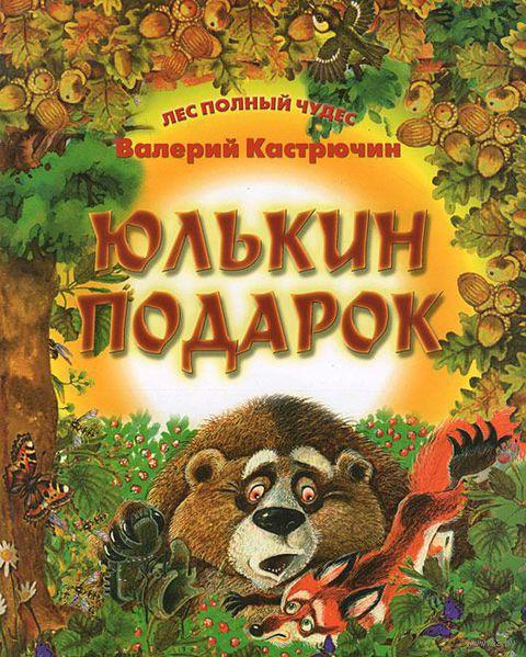 Юлькин подарок. Валерий Кастрючин