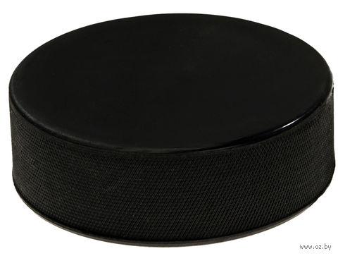 Шайба хоккейная (большая) — фото, картинка
