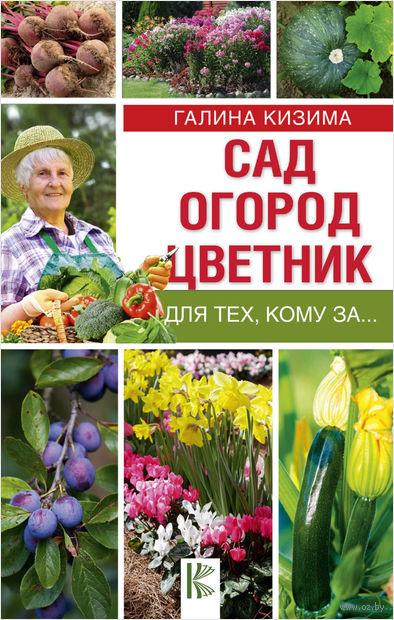 Сад, огород, цветник для тех, кому за… — фото, картинка