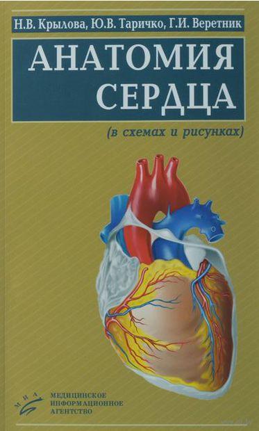 Анатомия сердца (в схемах и рисунках). Нина Крылова, Юрий Таричко