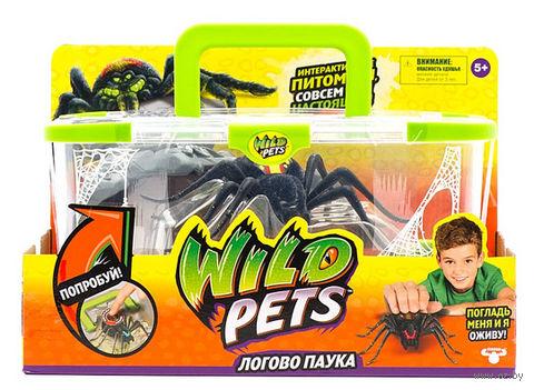 """Интерактивная игрушка """"Логово паука"""" (со световыми эффектами)"""