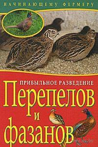 Прибыльное разведение перепелов и фазанов — фото, картинка