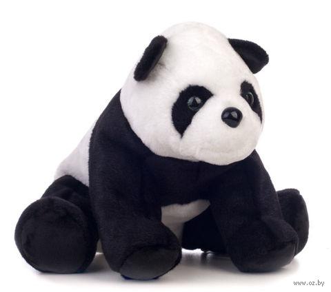 "Мягкая игрушка ""Панда"" (20 см) — фото, картинка"