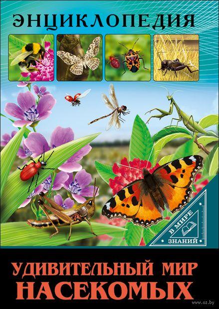 Удивительный мир насекомых — фото, картинка