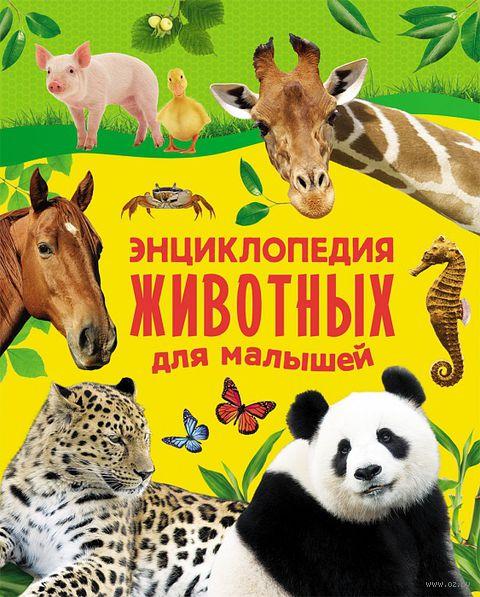 Энциклопедия животных для малышей. Екатерина Гуричева, Е. Алексеева