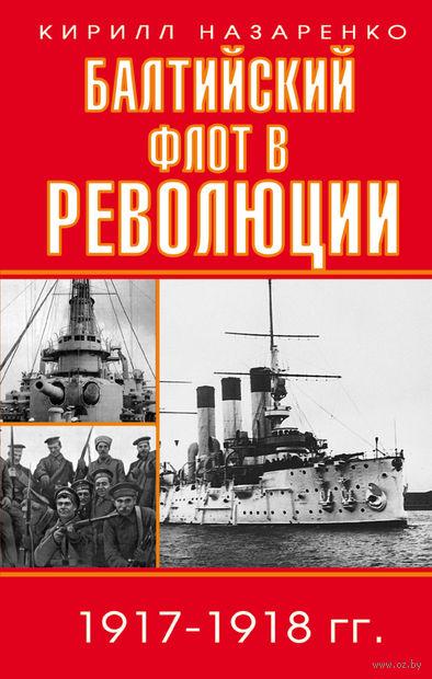 Балтийский флот в революции 1917-1918 гг. — фото, картинка