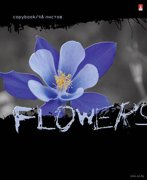 """Тетрадь полуобщая в клетку """"Цветы. Контраст"""" (48 листов; в ассортименте) — фото, картинка"""