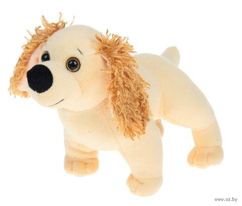 """Мягкая игрушка """"Собачка спаниель"""" (23 см) — фото, картинка"""