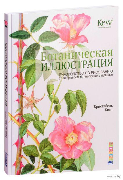 Ботаническая иллюстрация. Руководство по рисованию от Королевских ботанических садов Кью — фото, картинка