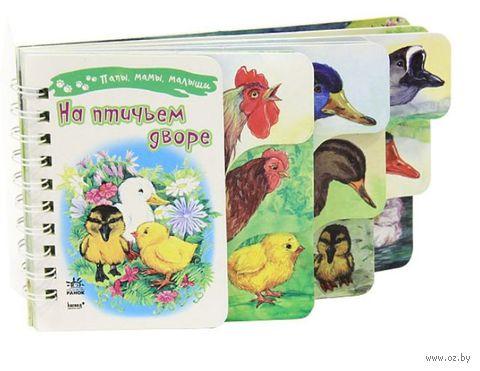 На птичьем дворе — фото, картинка