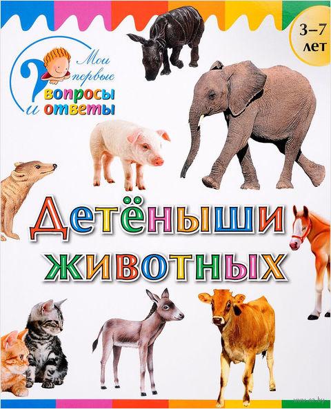 Детеныши животных. А. Орехов