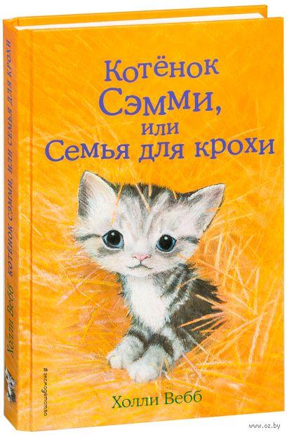 Котёнок Сэмми, или Семья для крохи — фото, картинка