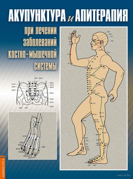 Акупунктура и апитерапия при лечении заболеваний костно-мышечной системы. Практическое руководство. Нина Усакова