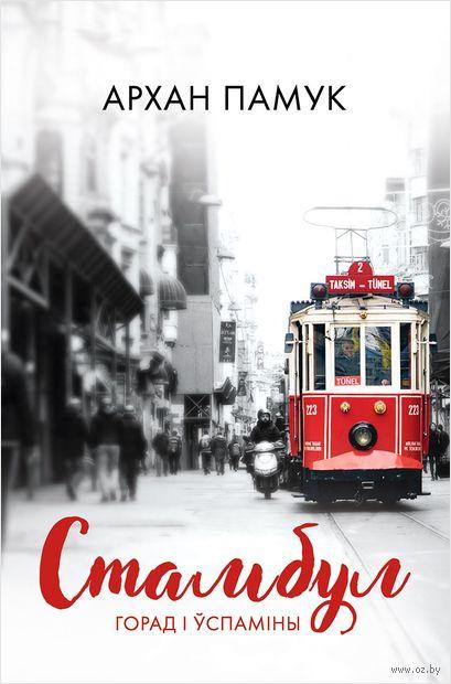 Стамбул. Горад і ўспаміны — фото, картинка