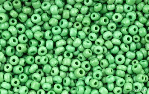 Бисер №47 (светло-зеленый; 11/0) — фото, картинка