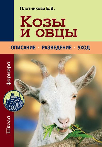 Козы и овцы. Елена Плотникова
