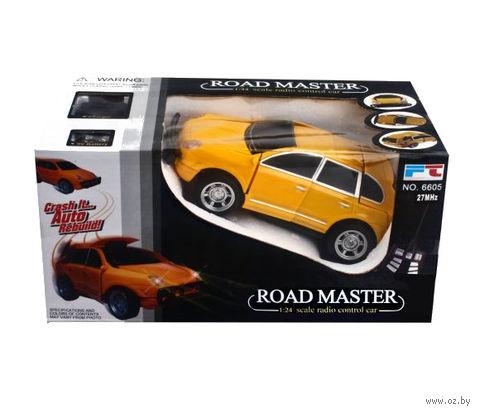 """Автомобиль на радиоуправлении """"Road Master"""" — фото, картинка"""