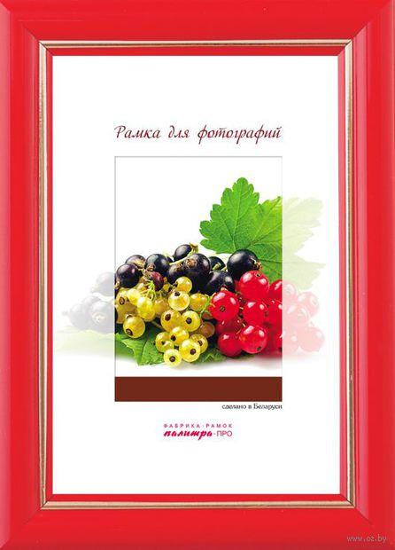 Рамка пластиковая со стеклом (18х24 см, арт. G023/521)