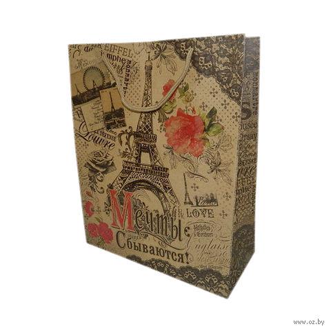 """Пакет бумажный подарочный """"Париж"""" (26х32х12 см; арт. 10645957)"""