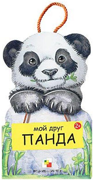 Мой друг Панда. Габриэле Клим