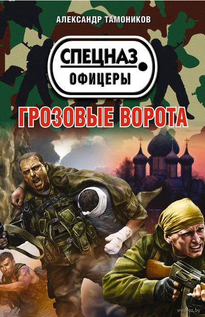 Грозовые ворота (м). Александр Тамоников