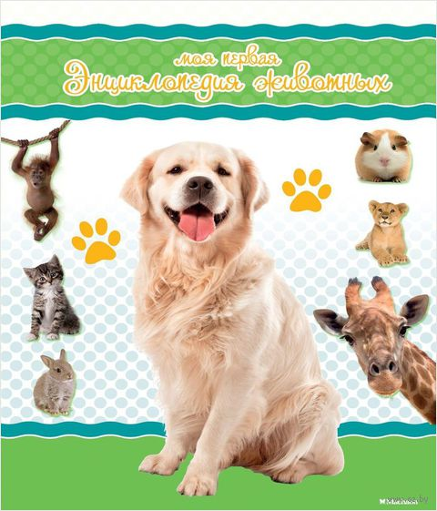 Моя первая энциклопедия животных. Натали Коэ