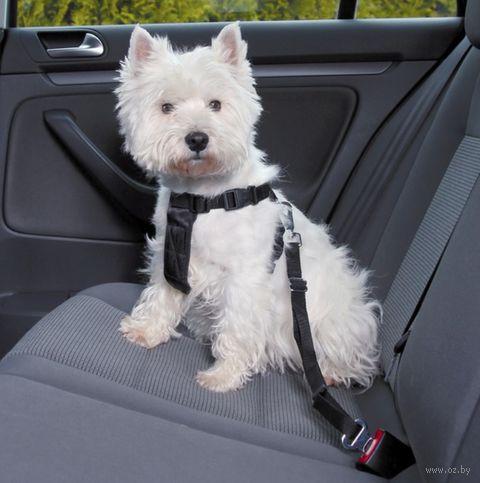 Ремень безопасности для собак (размер M/50-70 см; арт. 1291)